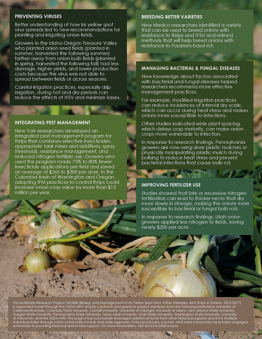 Managing Onion Pests and Diseases. Click to view/download a PDF of the Impact Statement.