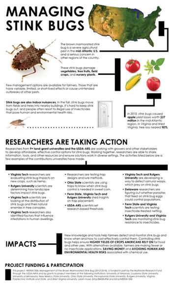 Managing Stink Bugs (NEERA-1306 | 2013-2018)