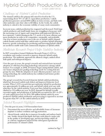 Hybrid Catfish Production & Performance (S-1031   2008-2013)