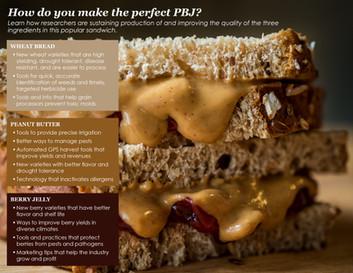 Making the Perfect PBJ