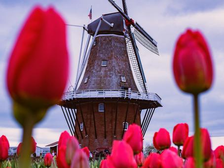 [Essencial] Holanda