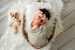 Newborn baby recien nacido mate