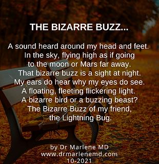 Bizarre buzz.png