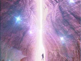WORLD WIDE WEB OF LIGHT