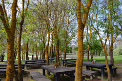 Lavandula-Farm-Hepburn-Springs-Grounds-Tables.jpg
