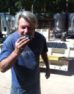Bob Foley eating a grape bunch during harvest