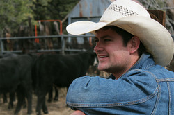 Cowboy looking at the cattle