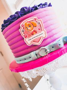 """Paw Patrol"" Themed Cake"
