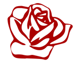red rose alpha back.png