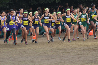 Cross country teams look to build foundations at state meet