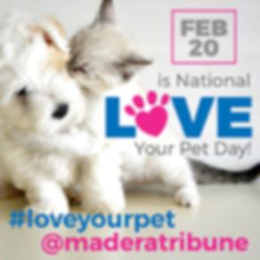 Love Your Pet.jpg