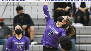 Stallions' volleyball take care of business