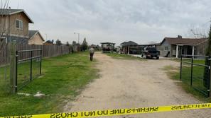 1 in custody following homicide