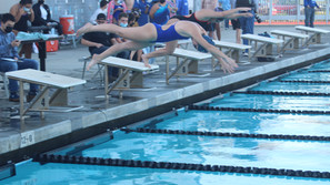 Stallions, Coyotes open swim season