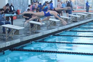 Stallions, Coyotes open swim season