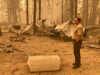 More than 3,000 working to contain ongoing Creek Fire