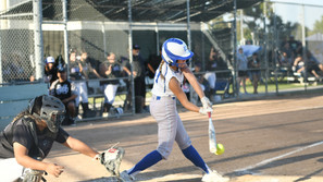 Coyotes complete sweep of Stallions, CMAC