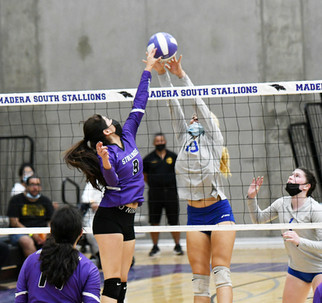 Stallions make quick work of Coyotes