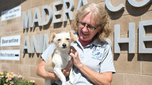 Animal Shelter to host Clear the Shelter event