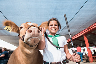 Agriculture is a way of life for youth exhibitors