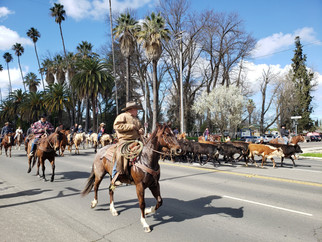 Chowchilla to host Stampede