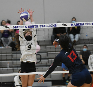 Stallions give CMAC champs a battle