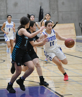 Coyotes fall in championship game