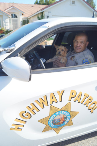 CHP rescues dog on freeway