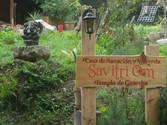 """Bienvenidos a la casa de Sanación y Ayurveda """"Savitri OM"""" - Templo de Ganesha"""