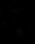 ne-undercoat-logo.png