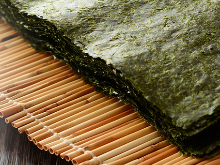 A alga Nori