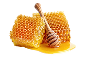 kisspng-honeycomb-bee-comb-honey-breakfast-5b3bade2f018a9_edited.png