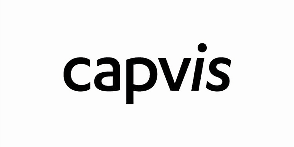 Capvis Workshop and Case Study