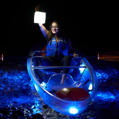 Illuminated night tours