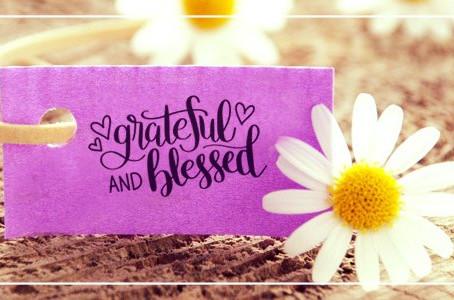 Agradecido y bendecido