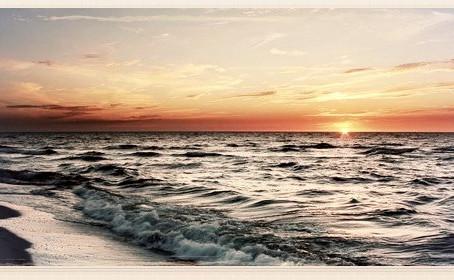 Rumor de olas