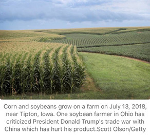 """Ohio farmer who backed Trump says he won't be voting for him in 2020: """"I have to protect my business"""