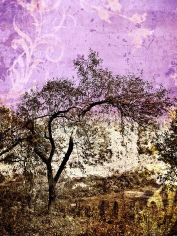 Filtered Tree