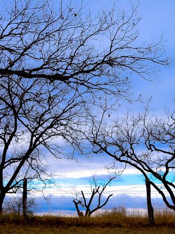 Late Blue Sky