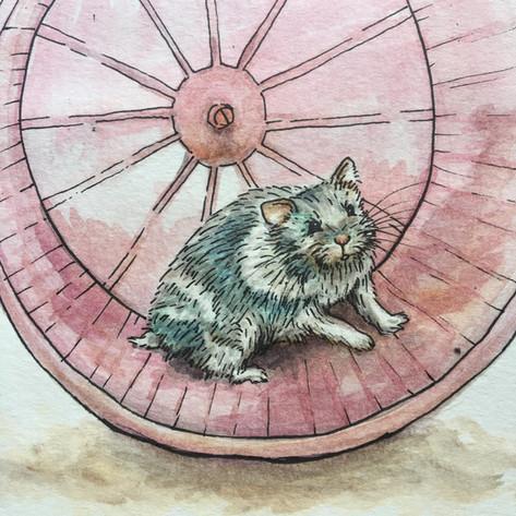"""""""wheel"""""""