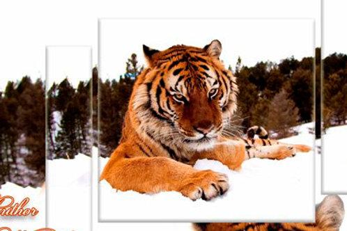 Тигр1, 100% натур. холст, подрамник.