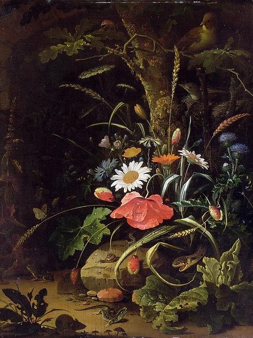 Миньон, Цветы, птицы, насекомые и рептил 30х40 см.