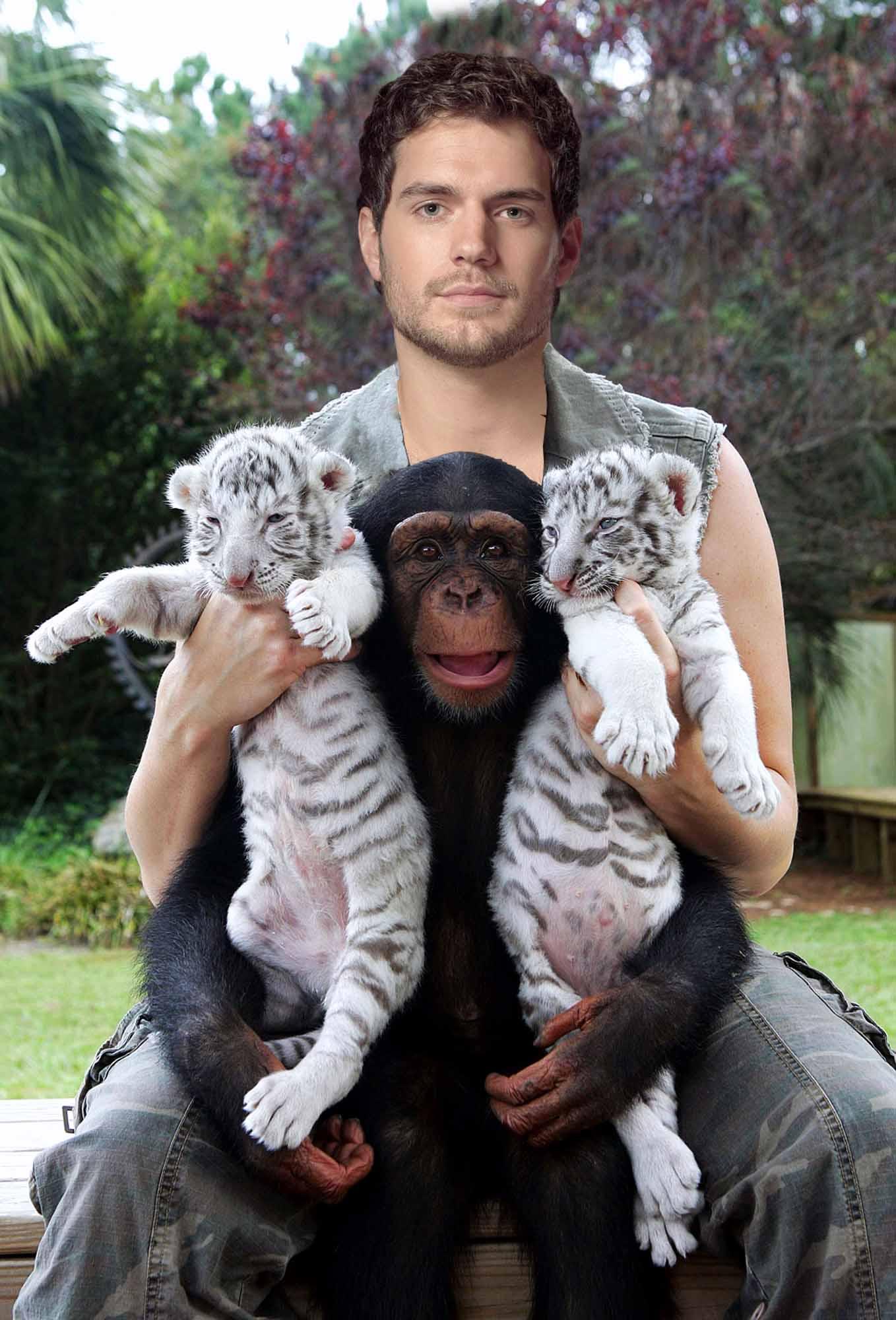 belie tigri.jpg