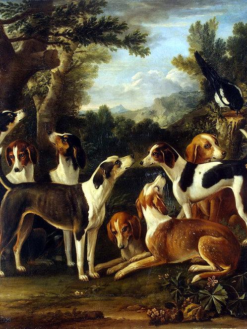Вуттон, Собаки и сорока, 30х40 см.