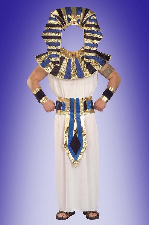 Художествееная обработка в костюм, № 468