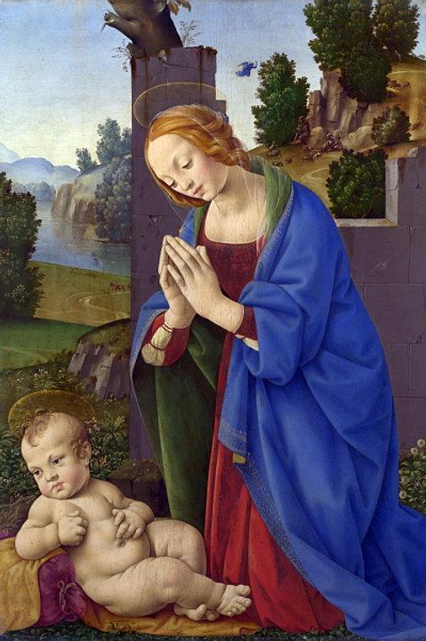 Лоренцо ди Креди - Дева Мария, поклоняю, 30х40 см.