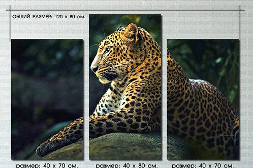 Леопард отдыхает. 100% натур. холст, подрамник.