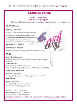 Affiche stage 2017-page-001