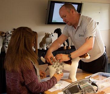 Canine First Aid course, Devon