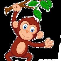 Monkey_edited.png